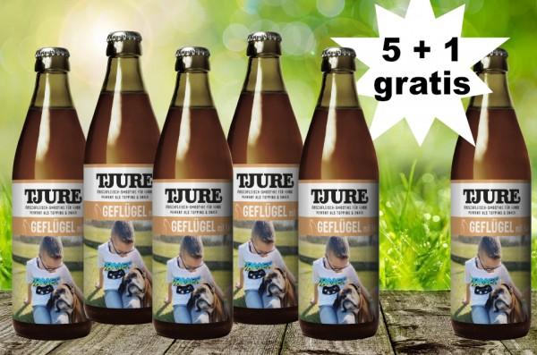 TJURE für Hunde - Geflügel & Kartoffel 5 + 1 GRATIS