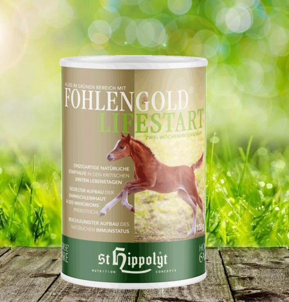 Fohlengold Lifestart 100 gr.