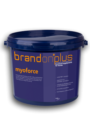 Brandon Plus Myoforce 3 kg