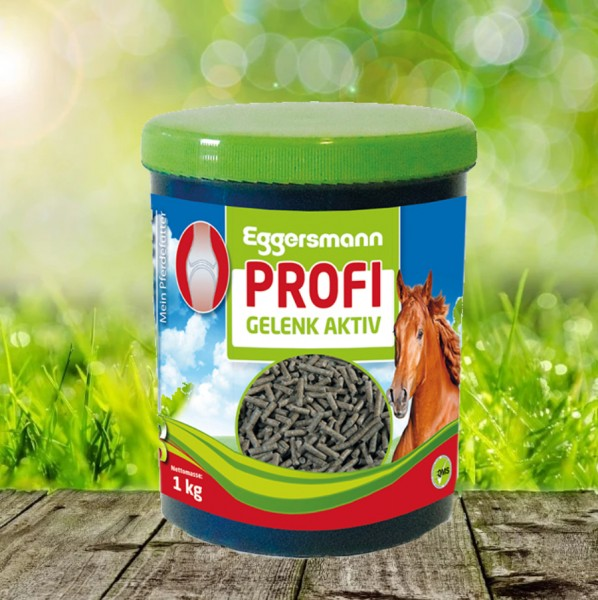 Eggersmann Profi Gelenk Aktiv 1 kg