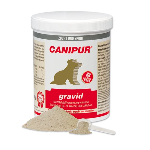 Canipur gravid + 400g Happy Dog Pur Dose *Gratis*