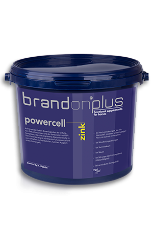 Brandon Plus Powercell Zink 3 kg