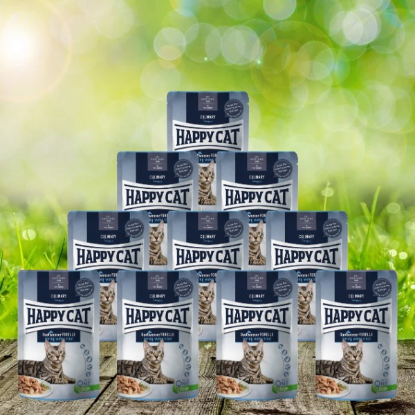 Happy Cat Meat in Sauce Pouches Culinary Quellwasser Forelle 24 x 85 g