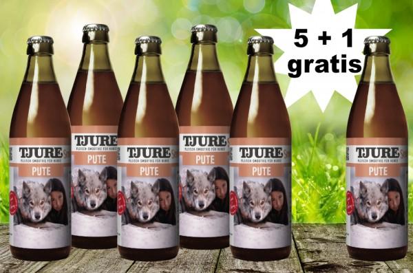 TJURE für Hunde - Pute & Reis 5 + 1 GRATIS
